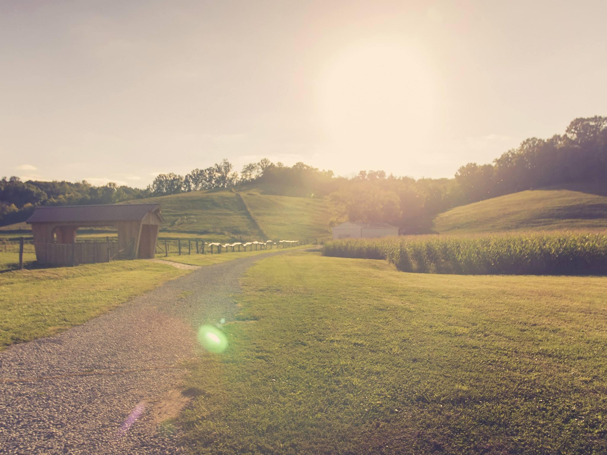 Neltner's Farm